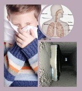 Profile Photos of Indoor Air Quality In Torrance