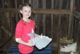 Summer collecting the eggs for breakfast. Peak Wilderness Experiences 346 Hunter Road