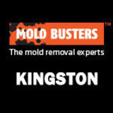 Mold Busters Kingston