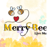 Merry Bees Wedding Live Band