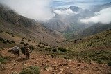 Pricelists of Trekking Morocco Mountains
