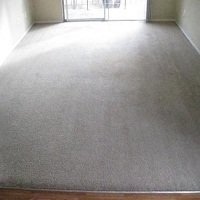 Profile Photos of Real Deal Carpet & Upholstery Cleaning 2264 Rio Lobo Lane - Photo 2 of 4