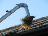 Profile Photos of Gutter Cleaning East Grinstead