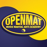 OpenMat MMA 295 College St Level B