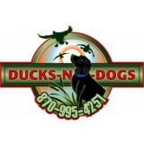 Ducks n Dogs