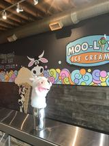 New Album of MOO-LIX Ice Cream Shop