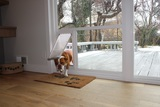Give your dog freedom with a sliding glass pet door from Pet Door Products in Salt Lake City!