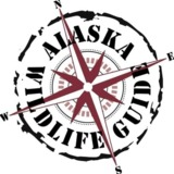Alaska-Wildlife-Guide LLC