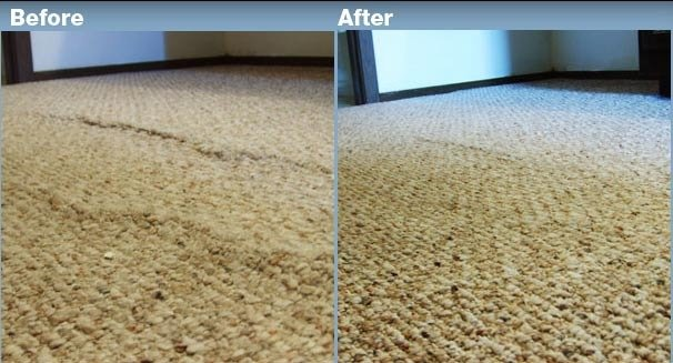 Profile Photos of Panorama city carpet cleaning 8931 Hazeltine ave - Photo 3 of 3
