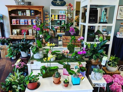 Profile Photos of Angelone's Florist 101 2nd Ave - Photo 3 of 4