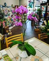 Angelone's Florist 101 2nd Ave