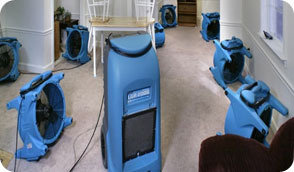 Profile Photos of Chino Carpet Cleaning Services 3661 Walnut Avenue - Photo 1 of 3