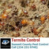 Profile Photos of Summit County Pest Control