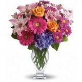 Profile Photos of Flower Delivery Kitchener