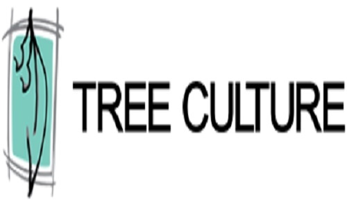 Profile Photos of Tree Culture 67 Newcastle St - Photo 1 of 2