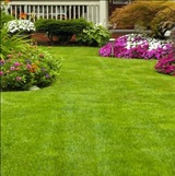 Elite Landscaping Madison 5706 Rosslare Lane