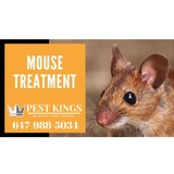 Profile Photos of Pest Kings Wildlife & Pest Control Bradford