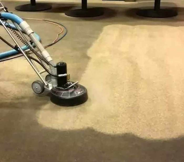 New Album of Carpet Cleaning Sunshine Coast 83 Maroochy Waters Dr - Photo 2 of 10
