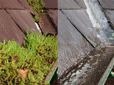 Profile Photos of Wigan Gutter Cleaning | Gutter Cleaner Wigan, Golborne, Lowton, Newton