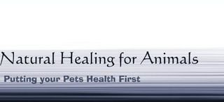 Natural Healing For Animals - Alternative Therapy For Pets