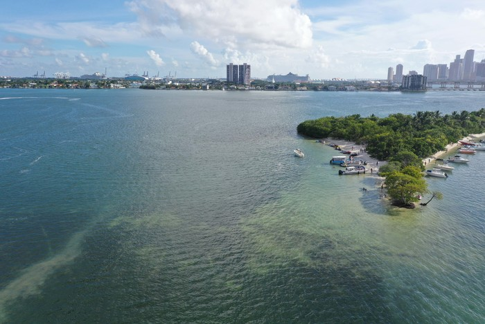 New Album of Jet Ski Rental In South Beach 900 West Avenue - Photo 1 of 4