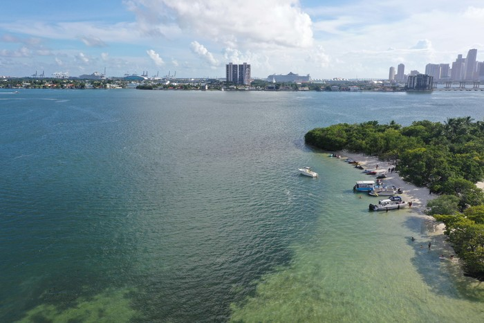 New Album of Jet Ski Rental In South Beach 900 West Avenue - Photo 3 of 4