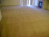 Profile Photos of Modern Carpet Cleaning