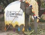 Profile Photos of Zuari Cement Limited