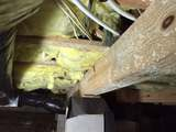 Profile Photos of Raleigh Mold Inspection and Remediation