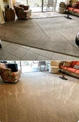 Profile Photos of Carpet Cleaning Local