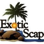 Exotic Scapes