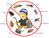 Rodent Control Brisbane Queensland