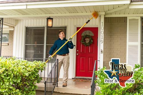 Profile Photos of Texas Star Pest & Termite 331 North Mill Street - Photo 3 of 5