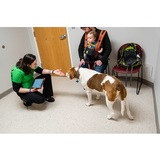 Profile Photos of PawSteps Veterinary Center