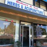 Profile Photos of Robert & Tao Herbs & Acupuncture