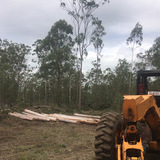 Profile Photos of LRB Tree Services