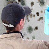 Residential Mold Remediation Fort Lauderdale FL