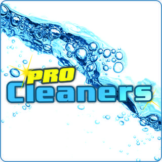 GREATER LONDON PRO CLEANERS