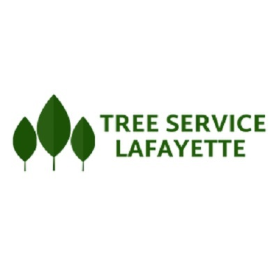 Profile Photos of Lafayette Tree Service Pros 320 S Chestnut St - Photo 1 of 1