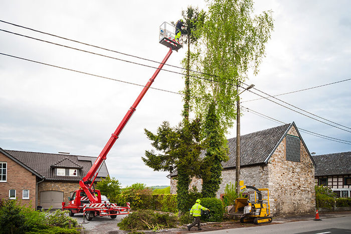 New Album of EP Tree Removal Erie PA 300 State St, #100 - Photo 4 of 4