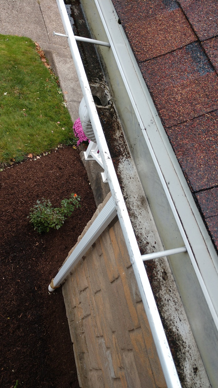 Gutter Cleaning in Pittsburgh New Album of Clean Pro Gutter Cleaning Pittsburgh 818 5th Ave - Photo 2 of 5