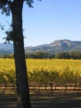 Pricelists of Shady Oaks Country Inn - Napa Valley Bed and breakfast