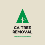 CA Tree Removal of Etobicoke
