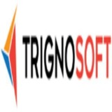 Website Development - Trignosoft Solutions