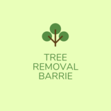 Tree Removal Barrie