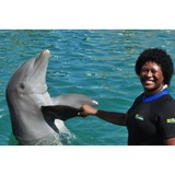 Profile Photos of Miami Swim With Dolphin Tours