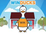 Winducks Gutter & Window Cleaning Calgary AB Main Display Picture