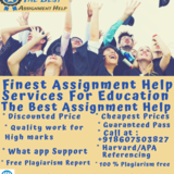 The Best Assignment Help