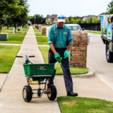 Nutri Green Lawn Treatment & Weed Control Service