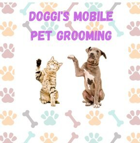Profile Photos of Doggi's Mobile Pet Grooming 5112 Hollywood Blvd Unit 6 - Photo 1 of 1